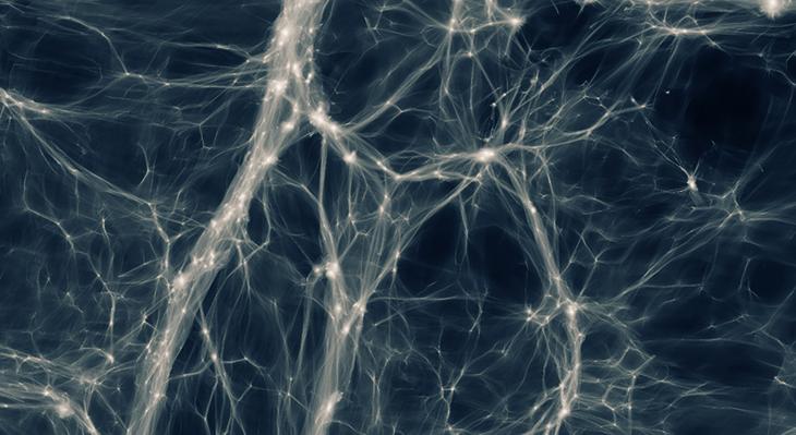 Kosmiska tomrum och universums mörka energi. Föredrag i Stockholm 28 november